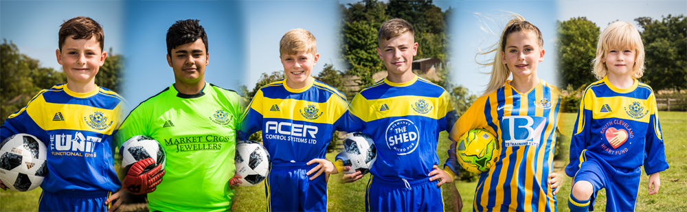Sponsored Strips from local Nunthorpe Business